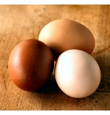 Eggware
