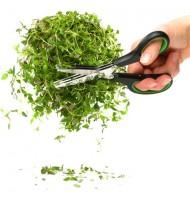 Sagaform Stainless Steel Herb Scissors
